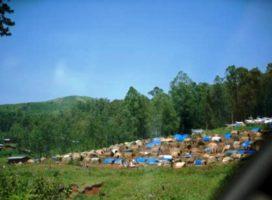 Nord-Kivu: Abasivile 48 bamaze kugwa mu bitero by'inyeshyamba za ADF muri Beni