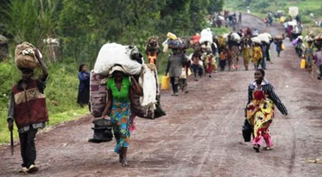 RDC:Imiryango irenga 100 yahunze muri Ituri kubera imirwango iri hagati ya FARDC na ADF