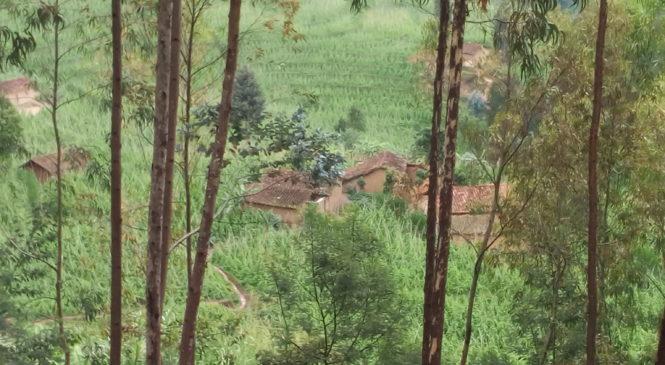 Kuvanga imyaka mu murima umwe bituma nta musaruro ubona ugushimishije